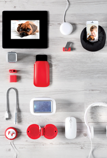 Technology & Accessories